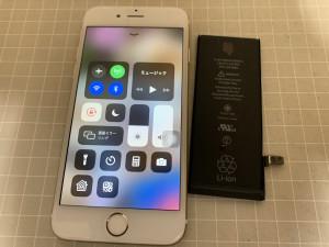 iphone6s  battery repair 19050