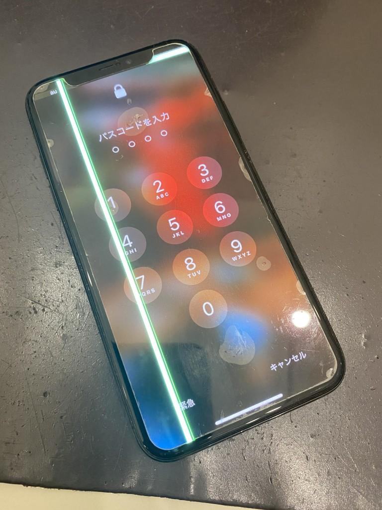 IMG-6769