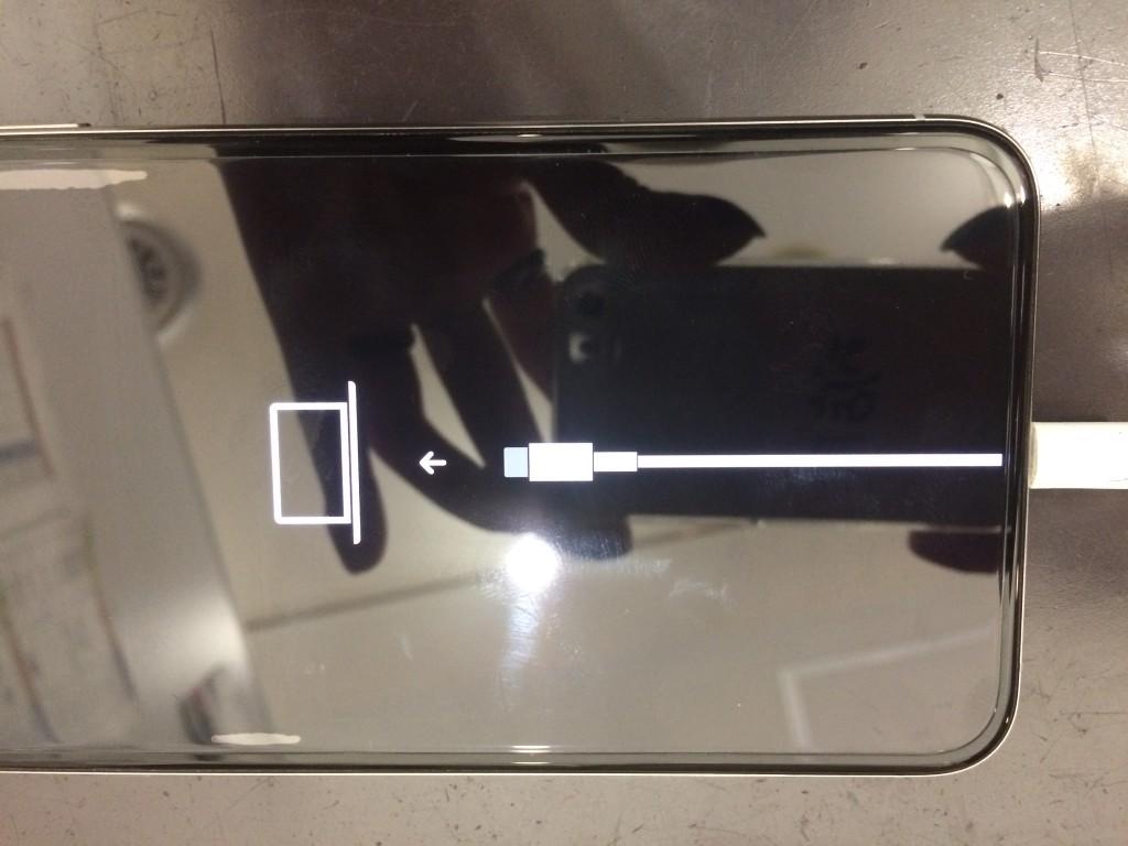 iPhoneXSmaxりんごループ